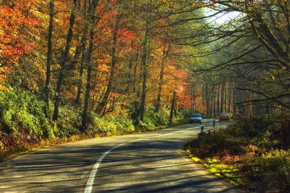 جاده شمال در پاییز