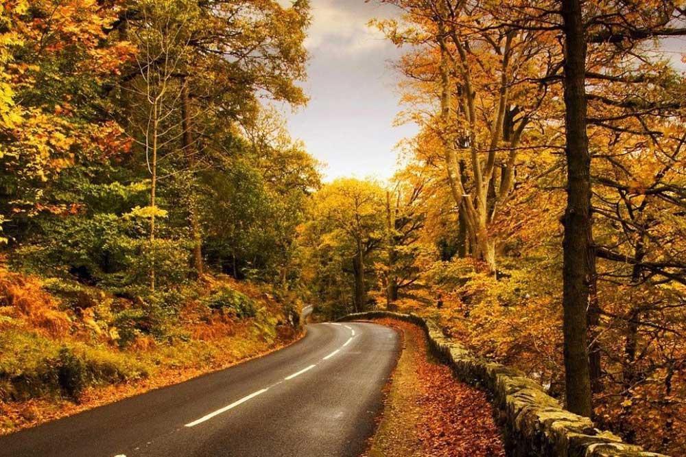 مسافرت به شمال در پاییز